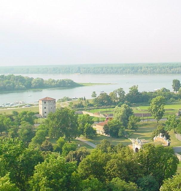 L\'incontro della Sava con il Danubio