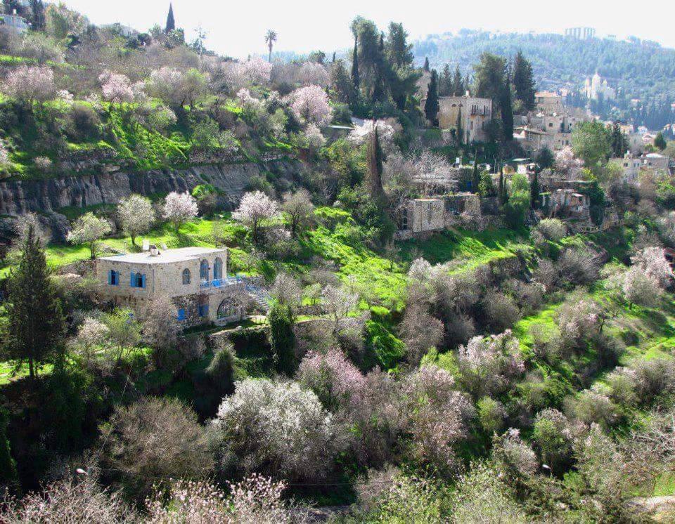 Lifta, Gerusalemme