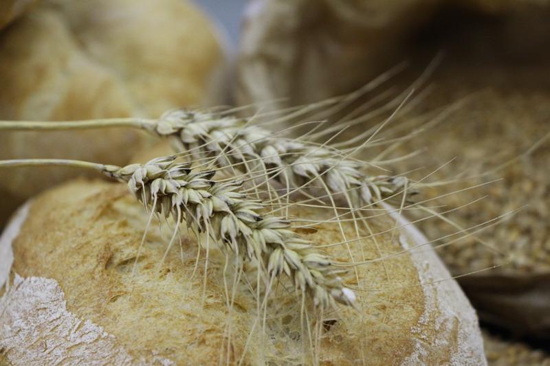 Il pane della Valle dei Laghi, uno dei progetti di rinascita della comunità