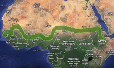 La Great Green Wall