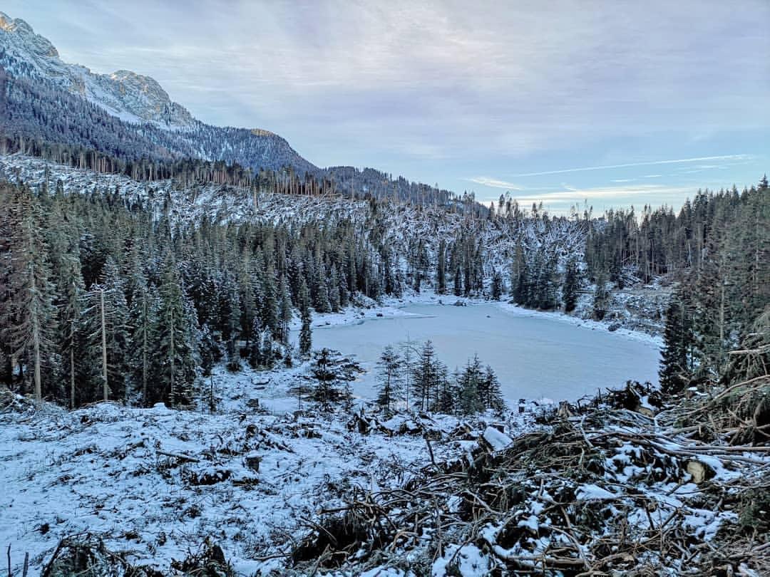 Il lago di Carezza e la devastazione del bosco