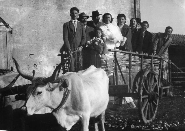 Carro matrimoniale