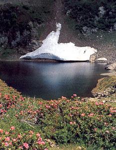 Il lago di Erdemolo