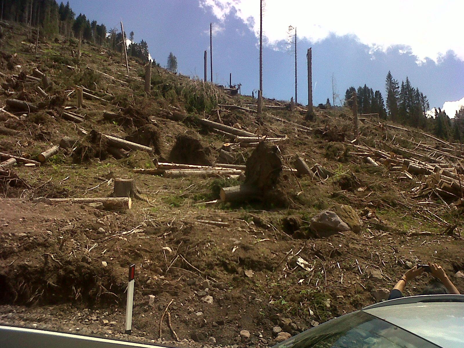 Effetti Vaia in Trentino