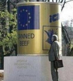 Sarajevo. Monumento agli aiuti internazionali